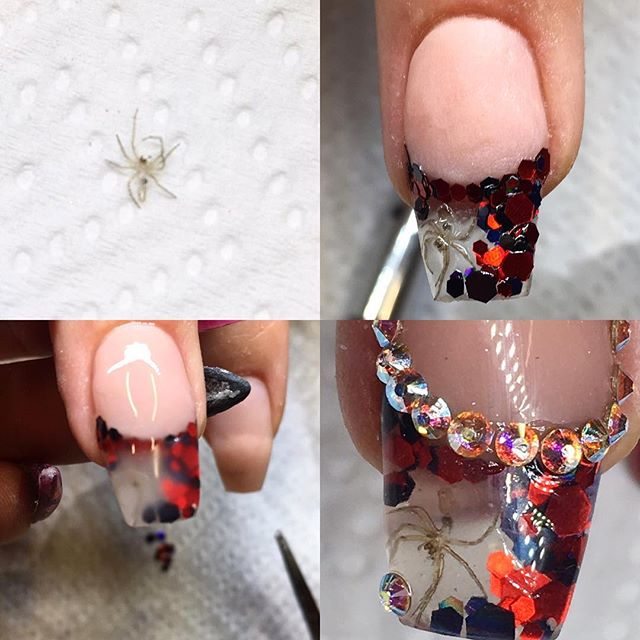 nail design with real spider