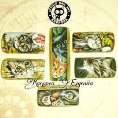 роспись ногтей кошачьи рисунки