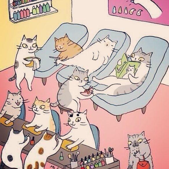 кошки в салоне прикольная картинка