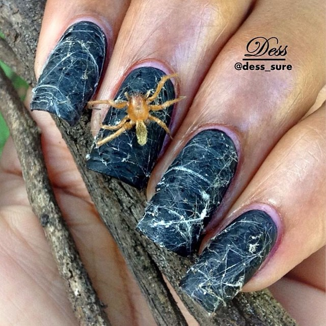 dark gray spider web nails