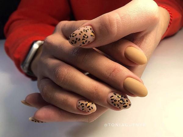 нюдовый-леопардовый-маникюр-с-позолотой